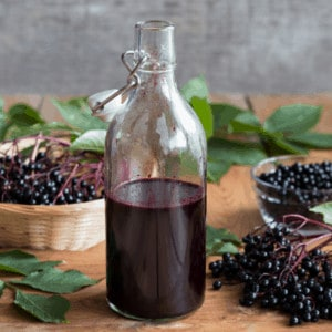 diy elderberry syrup