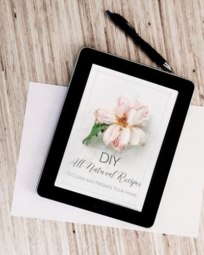 DIY Recipes Freebie Cover Page tablet image